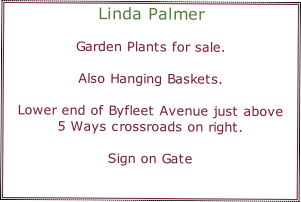 Linda Palmer